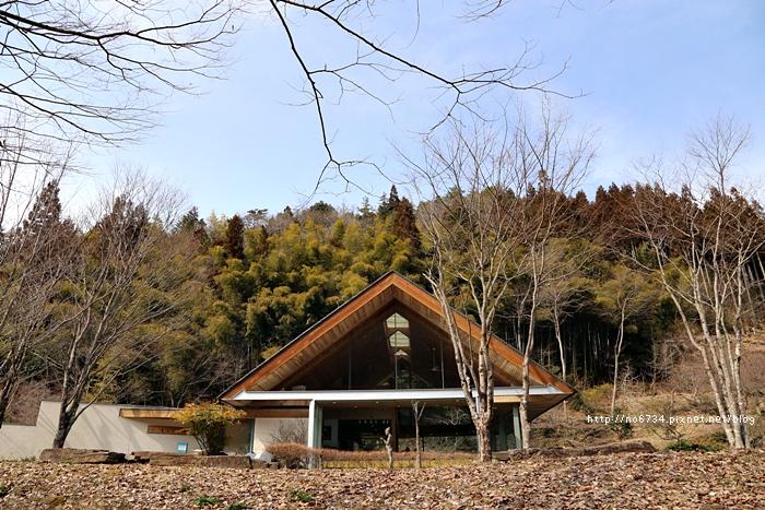 20130307_ToyamaJapan_3289 f
