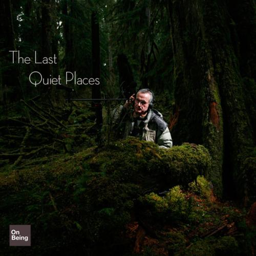 自然野地錄音師:戈登.漢普頓心目中最理想的錄音地點,在美國奧林匹克國家公園裡的霍河雨林。他認為自然、荒野中的寂靜之聲是亟需守護的,要讓世世代代的人都聽得見。圖片提供:范欽慧。