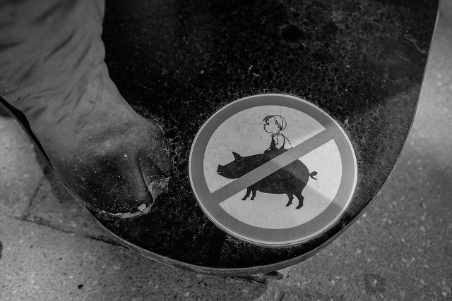 Don't ride the pig!