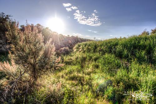 blue sky sun green grass clouds landscape nikon desert crystal full dirt frame 28 365 nikkor fx nano hdr sagebrush bracketing coating 2470mm d600