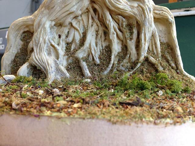 Door Project: The Tree of the Dead