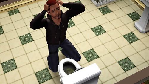 Toilet Broken!