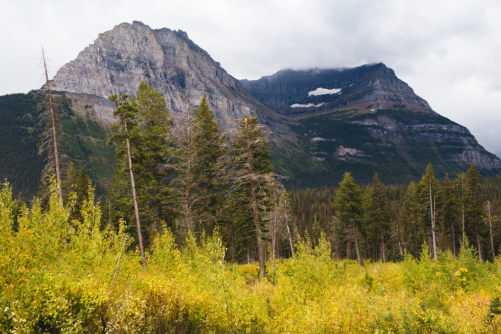 Montana2013_-22