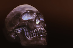 Cool Skull... 099/365