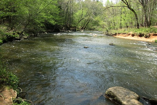 Spring on the Eno River