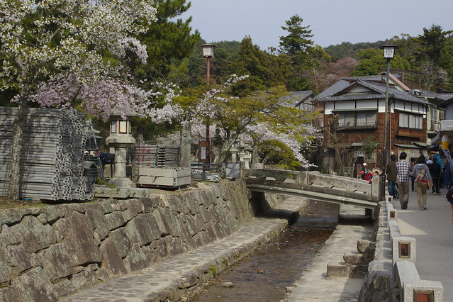 0933 - Isla de Miyajima