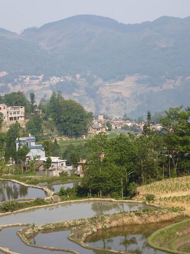 Yunnan13-Yuanyang 3-Huangcaoling (6)