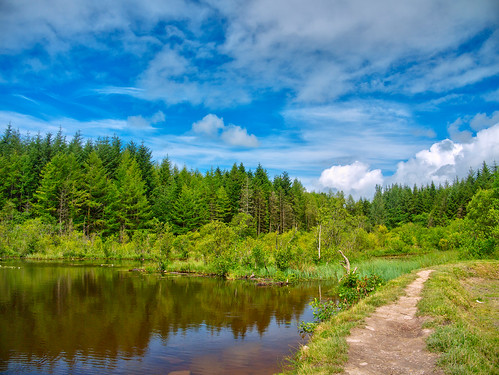 ireland sky lake nature water clouds forest landscape parks refelection panasonicg1