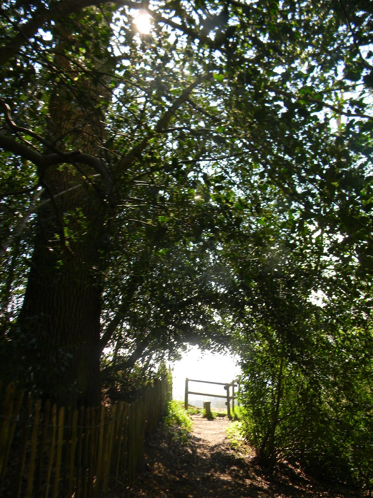 Stile approaching Hurst Green to Wetherham