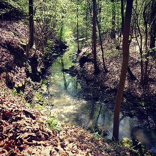 #drosbech #creek