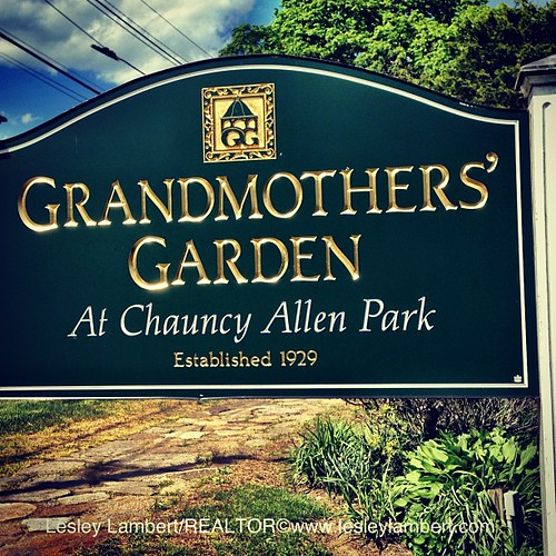 Grandmothers' Garden my fave park in #westfield #westernma http://bit.ly/1093MZj