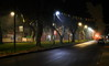 foggy avenue at night