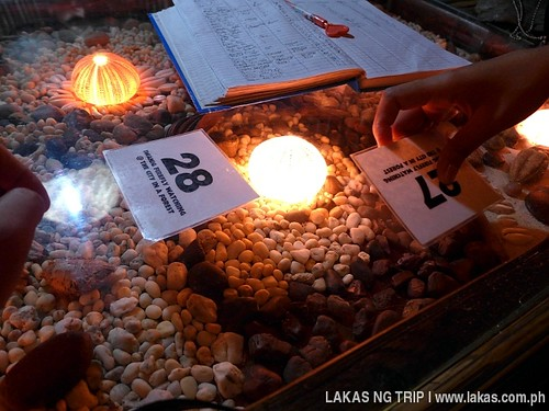 Queue Numbers given for us to properly wait at Iwahig Firefly Watching in Puerto Princesa City, Palawan