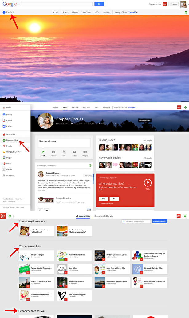 Google+ Profile and Communities Screen Shot