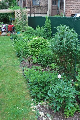 mark & kim's garden