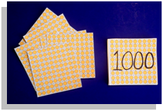 Ten Hundreds (Photo from Montessori at Home)
