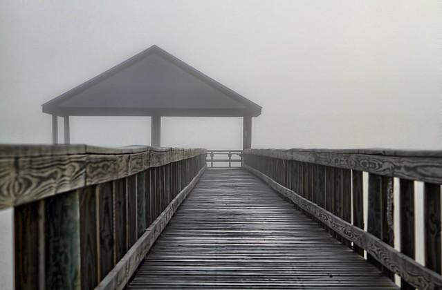 walk into the Fog