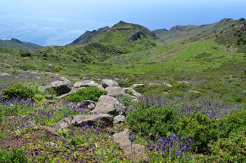 Teno Mountains and Atlantic, Tenerife