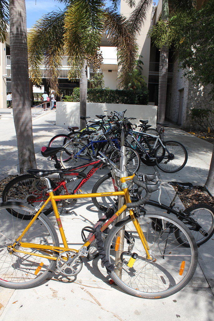 FAU Bike Racks