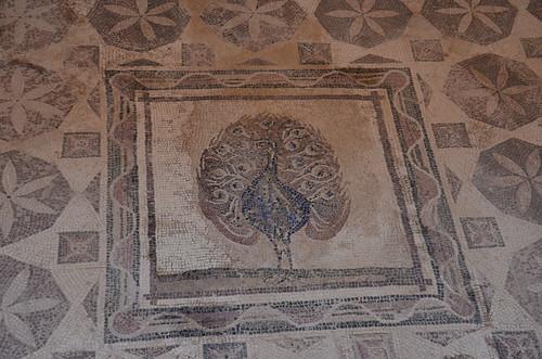 Darstellung des Pfaus, wie in koptischer Tradition