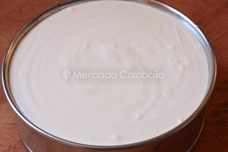 TARTA MOUSSE DE CHOCOLATE BLANCO-23