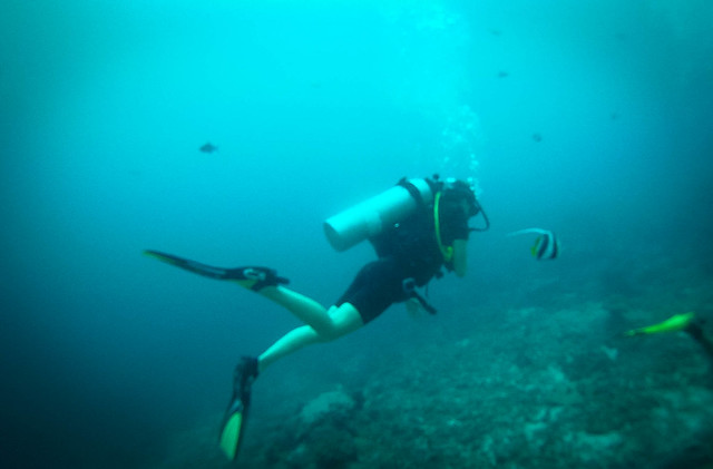 diving thailand
