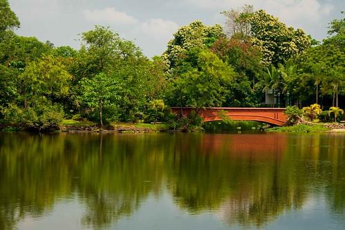 park nature philippines lagoon mateo pilipinas quezoncity thehousekeeper ninoyaquinoparksandwildlife georgemateo