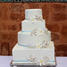 Sand Dollar and frangi pani wedding cake