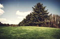 Clayton Park Golf Course, Clayton Park Course