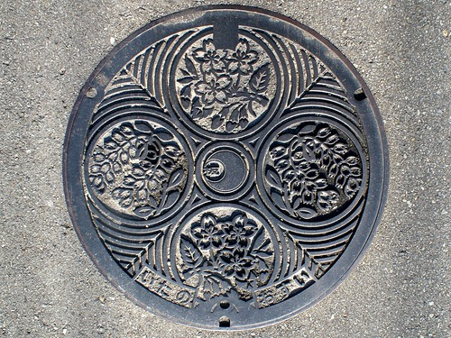 Itano town Tokushima pref, manhole cover (徳島県板野町のマンホール)
