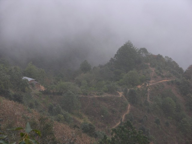 Sierra Mixe en la neblina - Mounatins of the Mixes in fog; cerca de Santa María Tepantlali en el camino a San Juan Juquila Mixes, Región Mixes, Oaxaca, Mexico