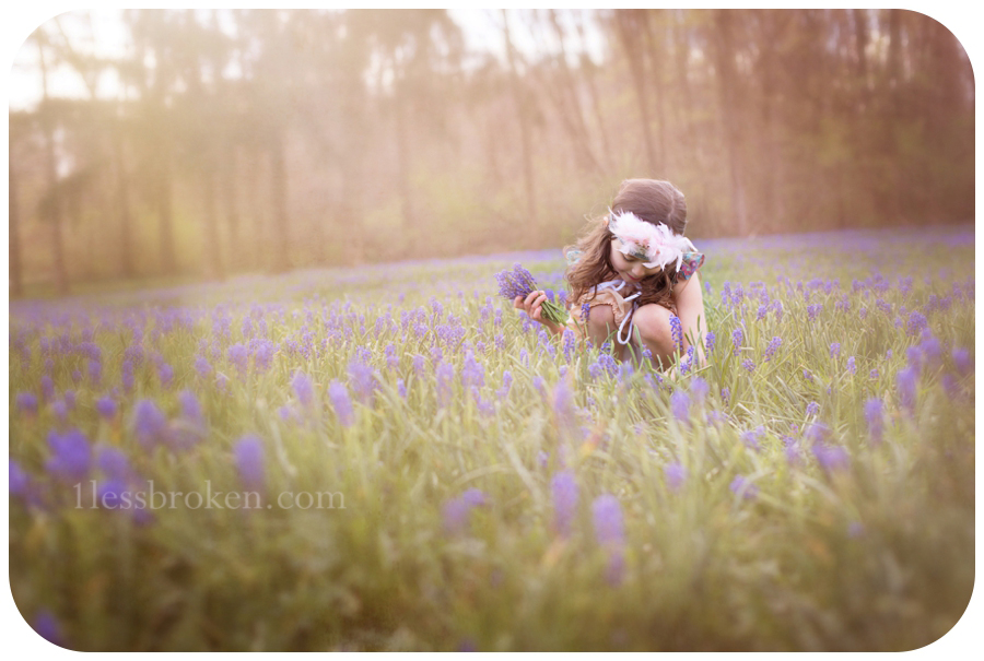 BLOG picking bluebells