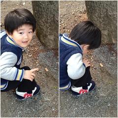 公園でアリの観察 2013/4/26