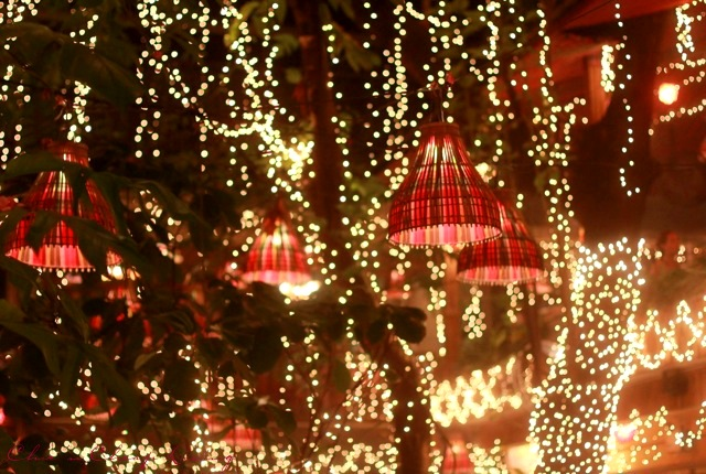 Bangkok-Cabbages-and-condoms-lights-on-trees-by-Chic-n-Cheap-Living