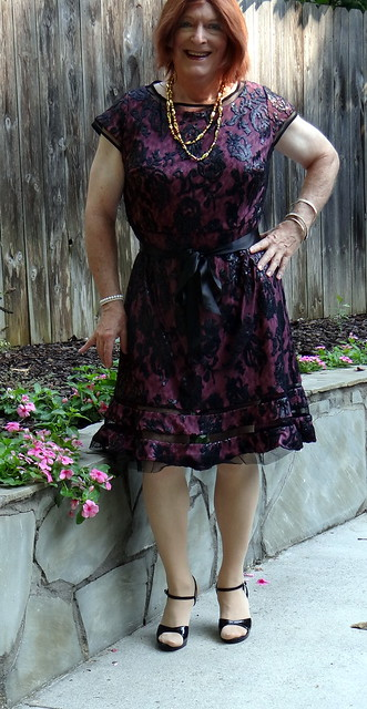 Cranberry Cocktail Dress and perrenial annuals