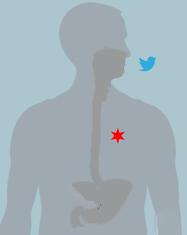 Stomach Issues? Take to Twitter & Let the City of Chicago know