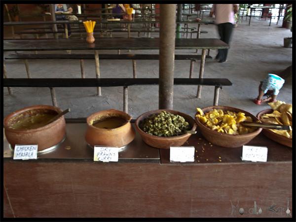 Spice plantation