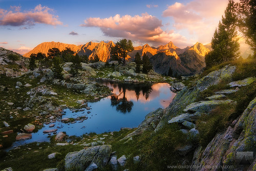 Summer Breeze - Aigüestortes NP, Pyrenees, Spain