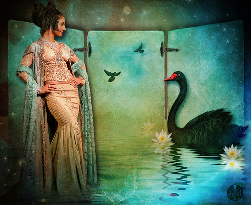Queen of the Swans