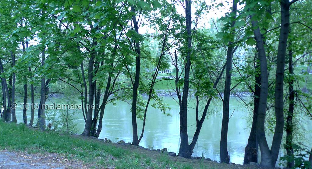 Vienna Donaukanal