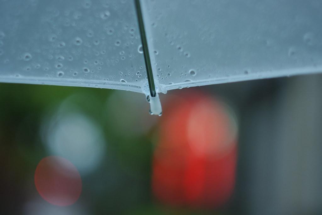 雨中的一天
