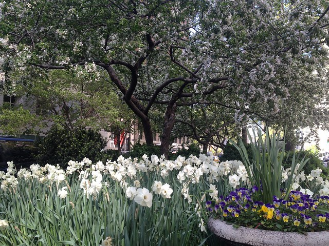 Spring on the Upper West Side