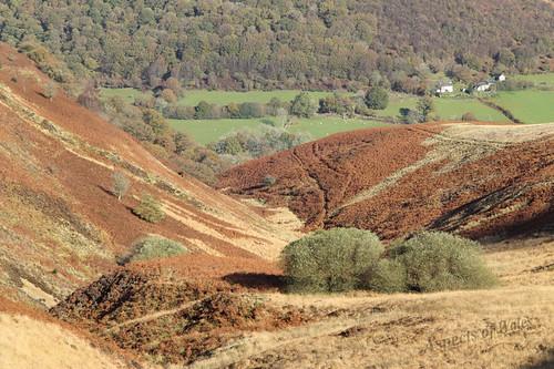 carmarthenshire rhandirmwyn tywi mynyddmallaen