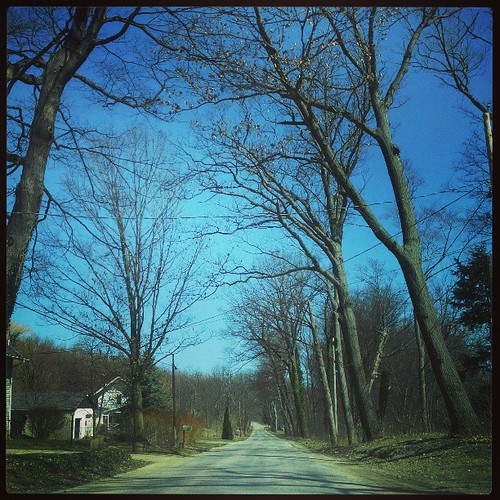 Somewhere in Northeast, Pa #trees #instanature #instatrees #northeast #pennsylvania #blue #spring