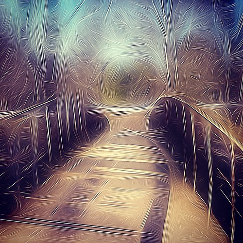 The bridge by @klawrenc