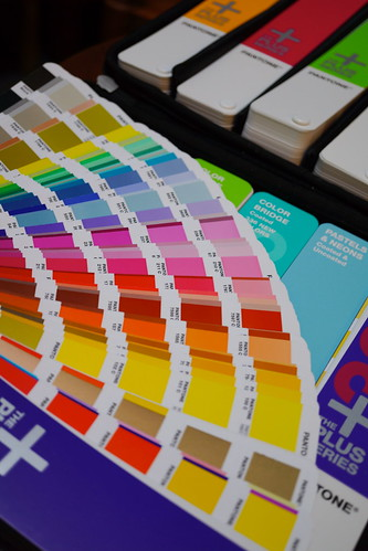 Project 100 2013 - Pantone Guide (7)