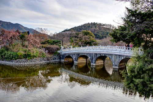 bridge water reflections spring korea southkorea daegu duryupark