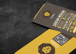 Techlion Corporate Branding Project