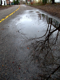 Puddle after a rainy day