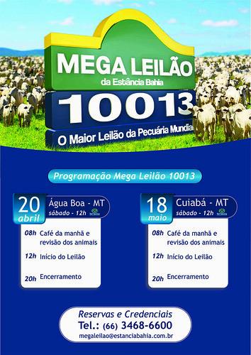 CONVITE POR EMAIL MEGA LEILÃO